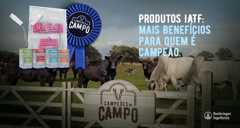 Campeões do Campo - IATF