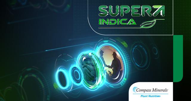 Super Indica