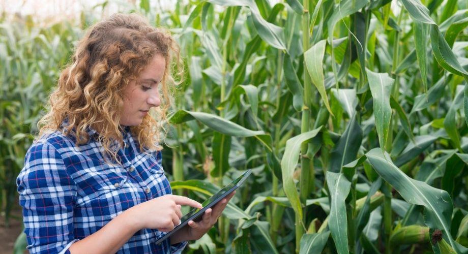 Inovações no agro se tornaram uma constante