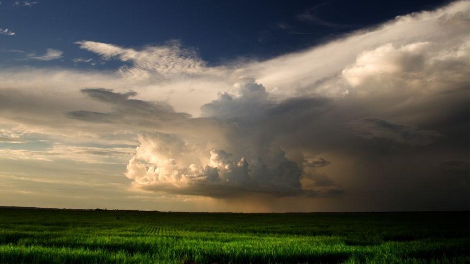 Seguro Agrícola protege sua safra de perdas por condições climáticas