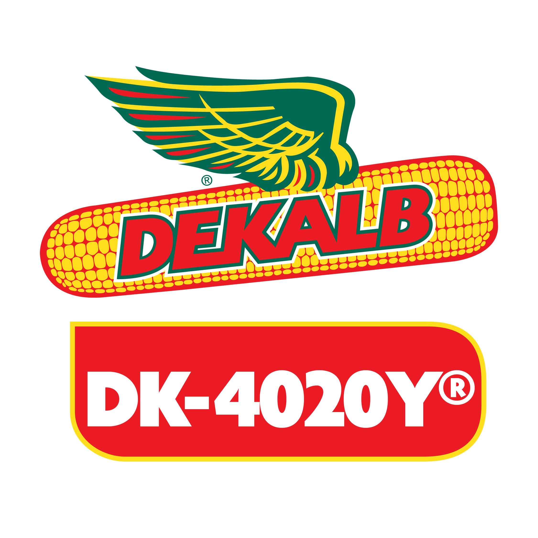 Semilla de Maíz DK-4020Y Tratada Acceleron