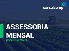 Assessoria Mensal - Consulcamp