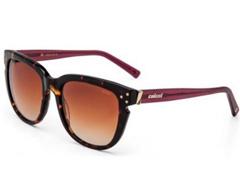 Óculos de Sol Colcci Eyewear Bordo Brilho