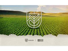 Treinamentos e Palestras - Kasuya Inteligência Agronômica