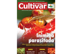 Revista Cultivar Hortaliças e Frutas