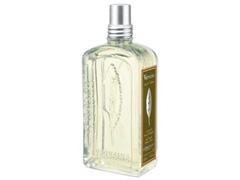 Perfume Eau de Toilette L'Occitane en Provence Verbena 100ml