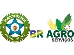 Patrulha Percevejo - BR AGRO - 0