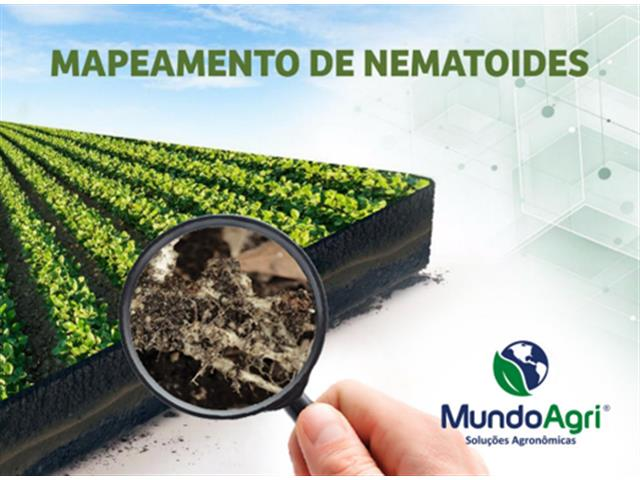 Mapeamento de Nematoide - Mundo Agri