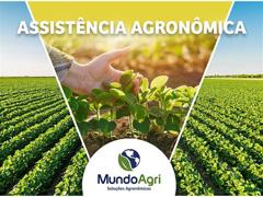 Assistência Agronômica - Mundo Agri