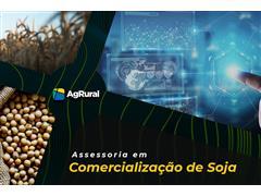 Assessoria em Comercialização da Soja - AgRural - 0