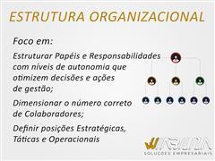 Estrutura Organizacional - Wiabiliza - 2