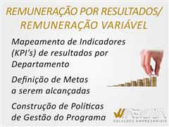 Remuneração Variável - Wiabiliza - 2