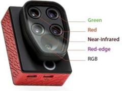 Drone Sensefly eBee SQ com Câmera Multiespectral Parrot Sequoia - 3