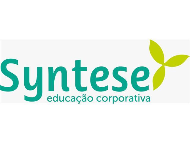 Treinamento e Desenvolvimento - Syntese