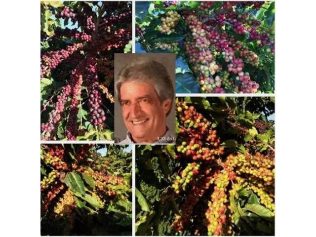 Agroespecialista - José Alberto Paranaíba