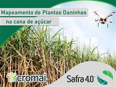 Mapeamento de Plantas Daninhas - Safra 4.0