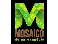 Mosaico do Agronegócio - SIA - 0