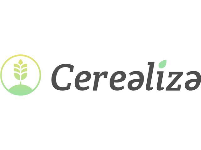 Consultoria - Cerealiza
