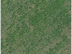 Georreferenciamento aplicado à Agricultura Digital - Arater - 5