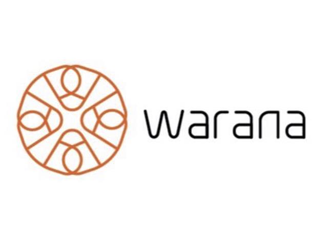 Mentoria Executiva para Líderes do AGRO – Warana