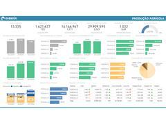 Software de Inteligência em dados de Gestão - 4