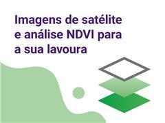 Aegro Imagens - Solução Aegro para imagens de satélite e NDVI - 1
