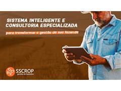 SSCROP - 0