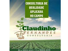 Ensaio de campo, consultoria a produtores - C.F. Consultoria