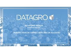 Gerenciamento de Risco de Precificação de Commodities - Datagro