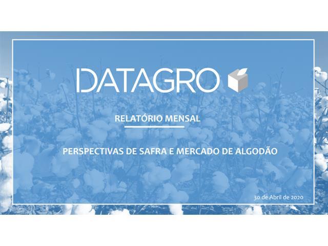 Inteligência de mercado - Datagro