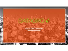 Inteligência de mercado - Datagro - 1