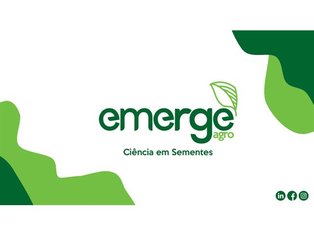 Consultoria em produção e tecnologia de sementes - EmergeAgro