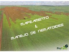 Clínica de Nematologia - Pro Farm