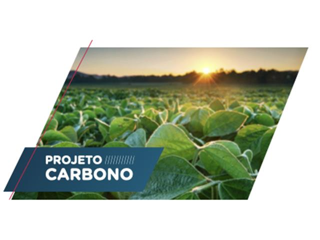 Projeto Carbono