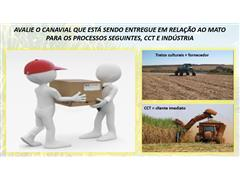 Diagnóstico de plantas daninhas em canaviais - Marcos Kuva - 3