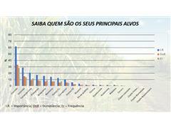 Diagnóstico de plantas daninhas em canaviais - Marcos Kuva - 5