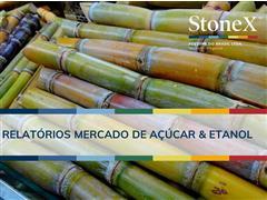 Relatórios para o Mercado de Açúcar & Etanol - StoneX