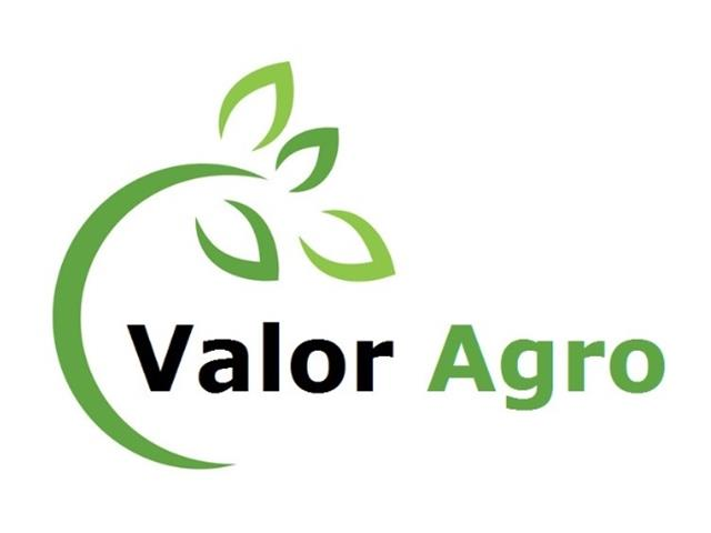 Treinamento em Desenvolvimento Gerencial Agrícola - VALOR AGRO