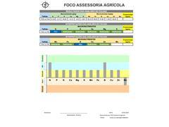 Amostragem Foliar - Foco Assessoria - 2