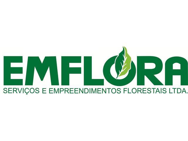 Aplicação de herbicida mecanizada área total boomjet - Emflora