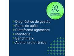 Consultoria Agroscore - SIAGRI  - 2