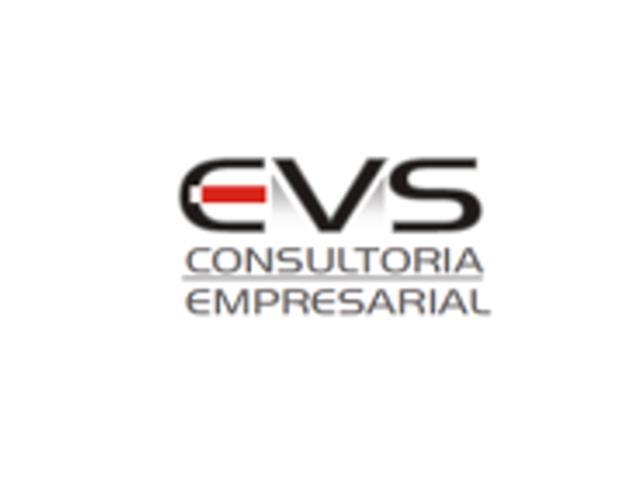 Consultoria Gestão financeira e econômica - EVS Consultoria