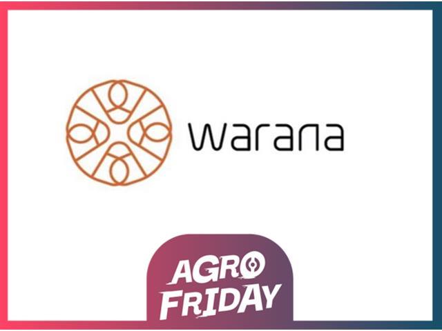 Coaching Executivo Individual - Online – Warana