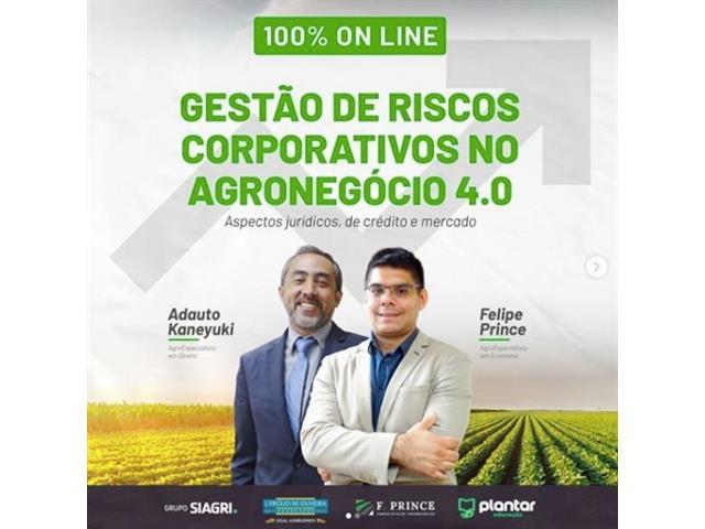 Treinamento Gestão de Riscos Corporativos no Agronegócio - F. PRINCE