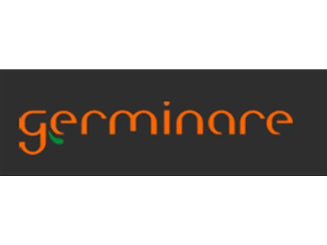 Comercialização e consultoria de commodities agrícolas - GERMINARE