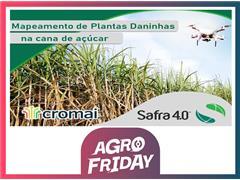 Mapeamento de Plantas Daninhas em cana-de-açúcar – Safra 4.0 - 0