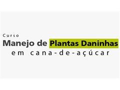 Manejo de Plantas Daninhas em Cana de Açúcar – Prof Dr Christoffoleti