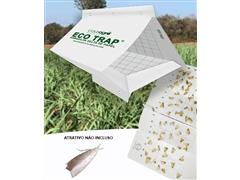 Combo Armadilha Eco Trap Delta Papel