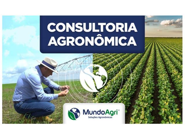 Consultoria Agronômica - Agromave