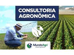 Consultoria Agronômica - Mundo Agri